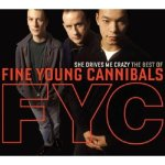 """""""Fine Young Cannibals – She Drives Me Crazy (1989)"""" onYouTube"""