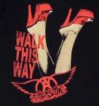 """""""Aerosmith Walk This Way Lyrics"""""""